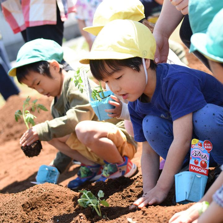 「虫がついている野菜はおいしい」はホント? 子どもの感性を育む「植育」と「家庭菜園」のヒント