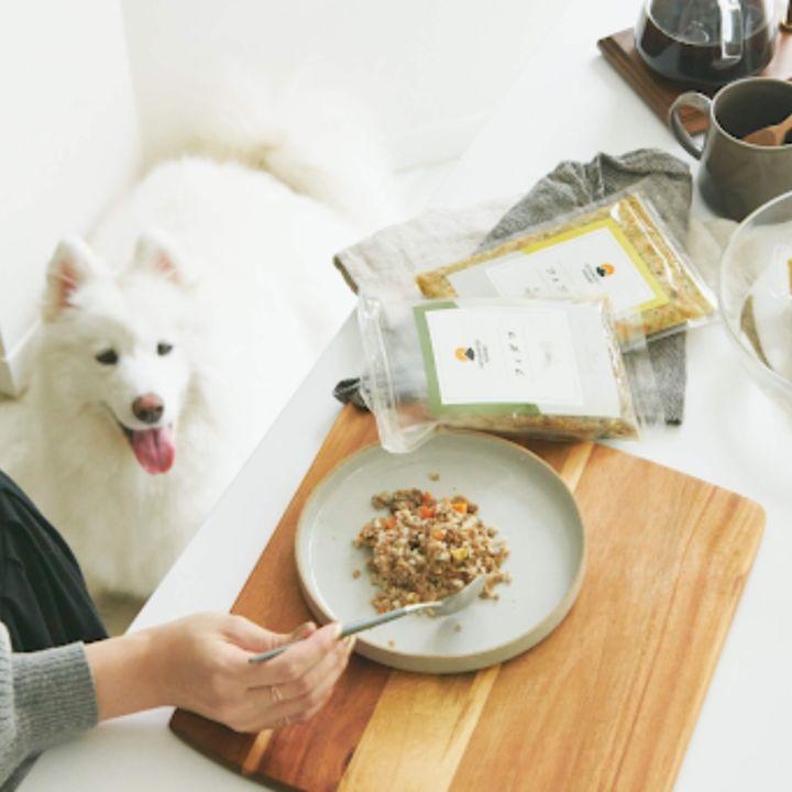 人間も食べられるドッグフード「PETOKOTO FOODS」が冷やしドッグフードを発売!