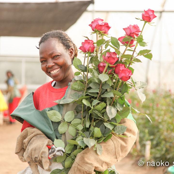 「AFRIKA ROSE」がカーボン・オフセット・オプション導入でCO2排出を削減