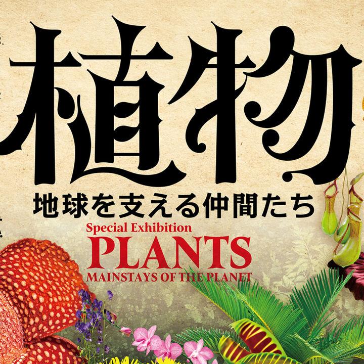 国立科学博物館特別展「植物 地球を支える仲間たち」が開催中