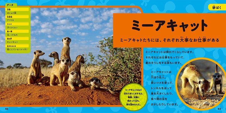 ナショジオキッズ 大きな写真で楽しむ はじめてのわくわく図鑑 動物編