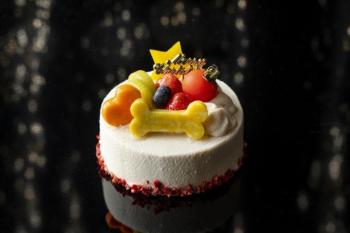 パウズ・クリスマス ドッグ用ケーキ(直径12cm)3,000円(税込)※イメージ画像