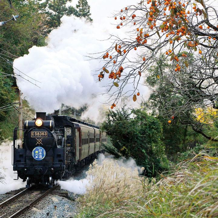 秩父鉄道が大人も子どもも楽しめる鉄道体験イベントを開催