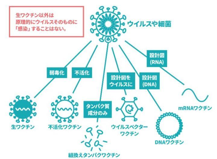 出典:新型コロナワクチンQ&A/厚生労働省