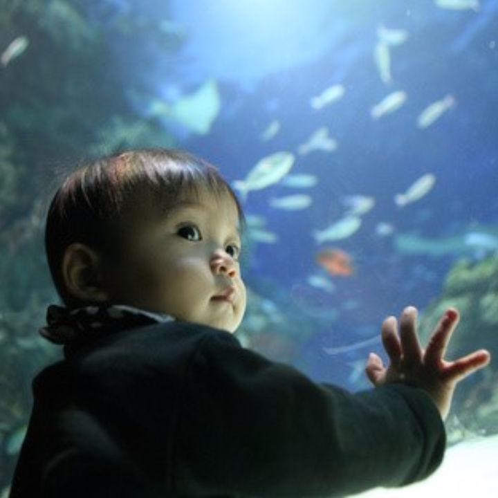 雨の日に行く子どもの遊び場。東京の屋内施設の魅力を紹介