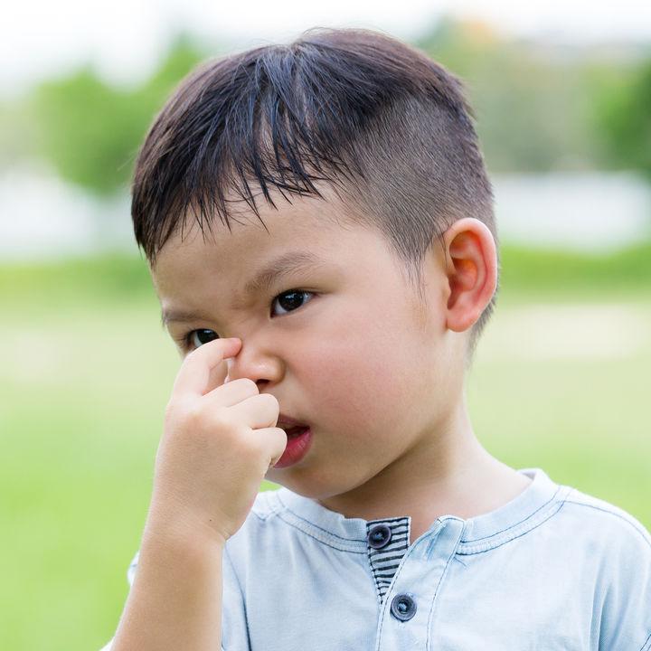 【小児科医監修】アレルギー性鼻炎の原因とは、風邪との違いや発熱の有無、花粉症との関係