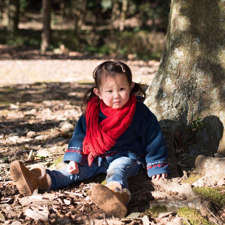 3歳児が喜ぶ外遊びと楽しめるおもちゃを用いた遊び