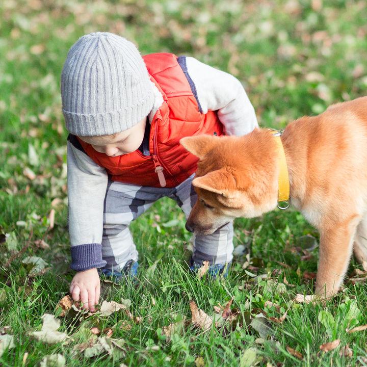 キッズ用ダウンベストは秋冬に使える!種類別・年齢別ダウンベストの選び方