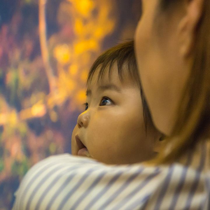 九州にある赤ちゃん連れにおすすめの水族館。ママ目線で選ぶ子連れにやさしいスポット