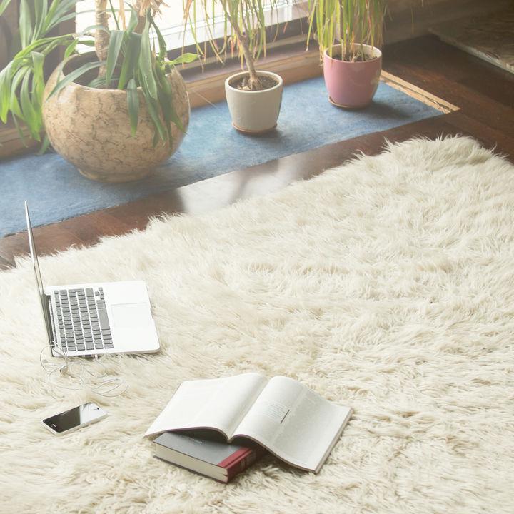 毛の長いカーペット掃除のコツとは。掃除の手順やふんわりさせるために使う道具