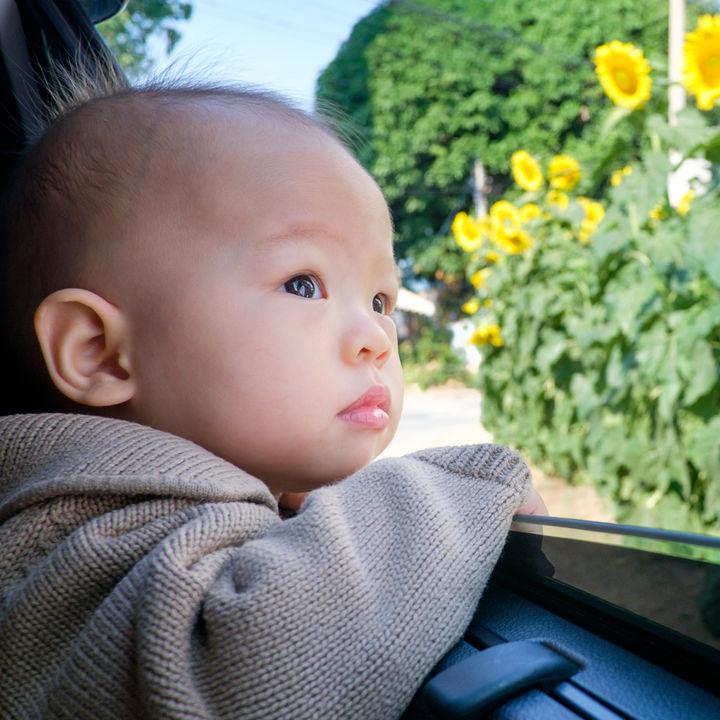 生後7カ月の赤ちゃんとの旅行計画。持ち物や注意点など