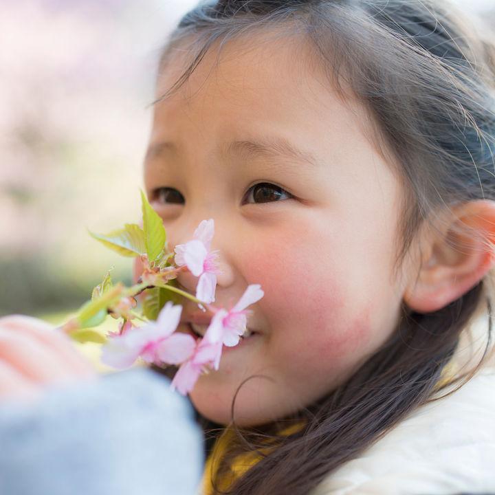 年齢別の幼児の遊び。4歳、5歳、6歳が楽しめる室内遊びや外遊びとは