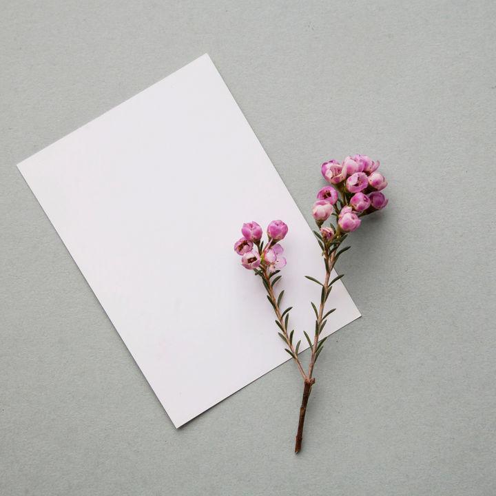 お歳暮のお礼状をビジネスシーンで書くときのポイント。宛名や縦書きの手紙、メールの場合など