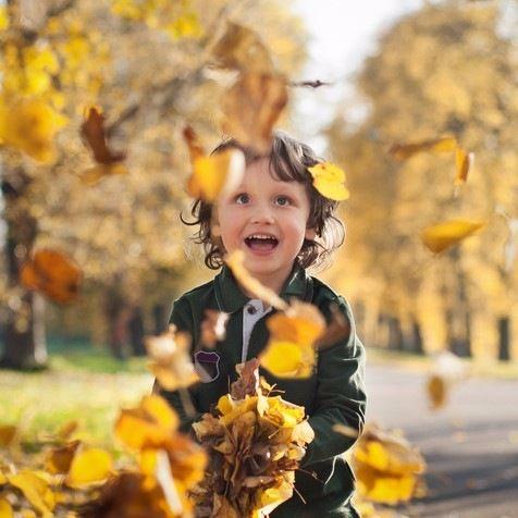 「あの黄色い葉っぱはな~に?」親子で学んで遊ぼう!紅葉シーズンの楽しみ方