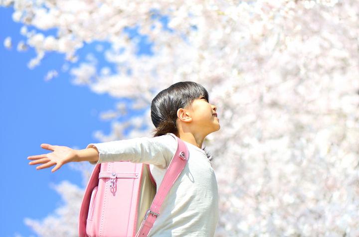 桜と小学生