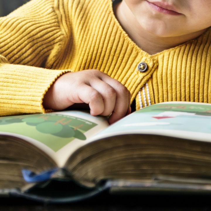 幼児が喜ぶ図鑑とは。子どもの興味にあった図鑑の選び方
