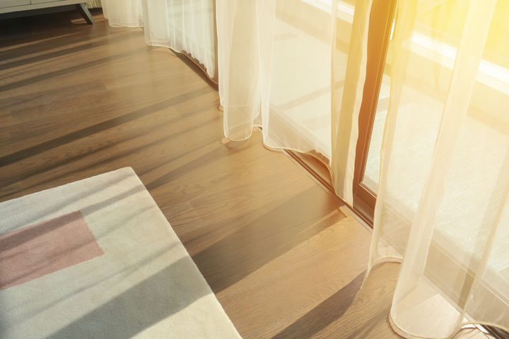 陽のあたる部屋