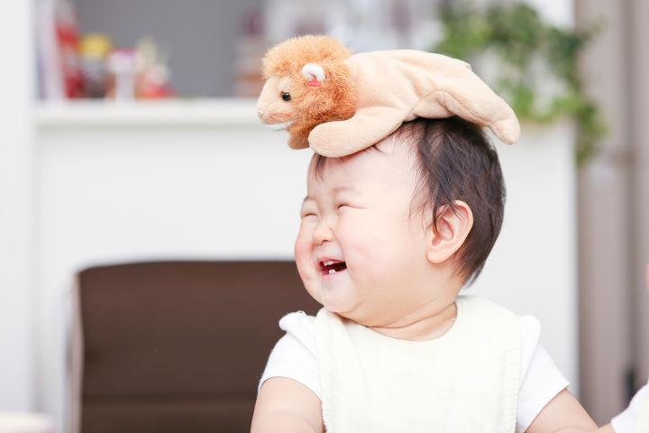 頭にぬいぐるみの乗った赤ちゃん