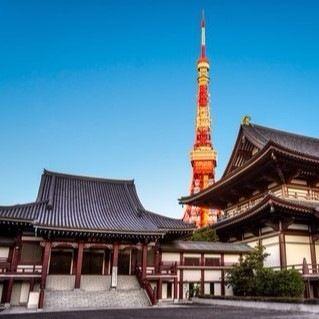 東京で初詣に行くなら?子連れで行く場合に気をつけたいこと