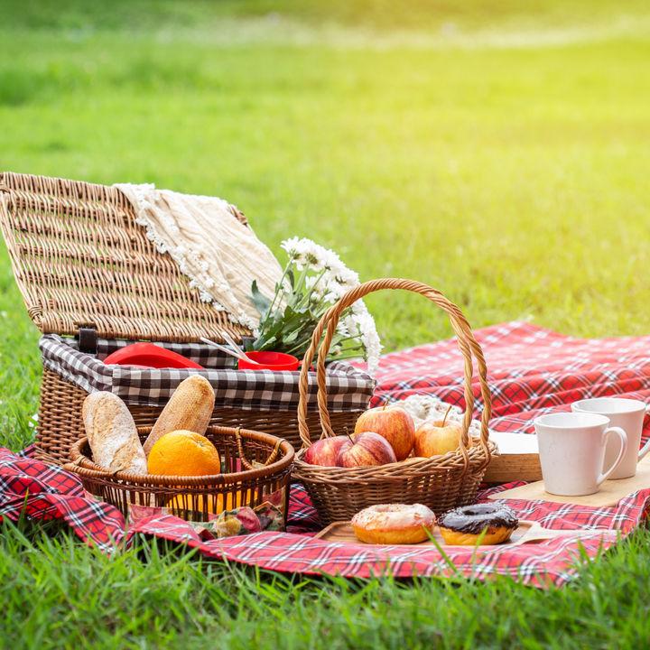 ピクニックがより楽しくなる!簡単でおしゃれなお弁当の作り方