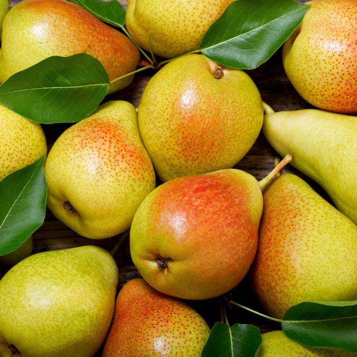 洋梨の離乳食後期・完了期のアレンジレシピ。進め方や与える量の目安
