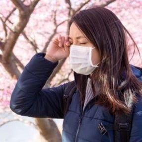 お医者さんにきく、花粉症の市販薬と病院の処方薬の違い。どちらが割高?