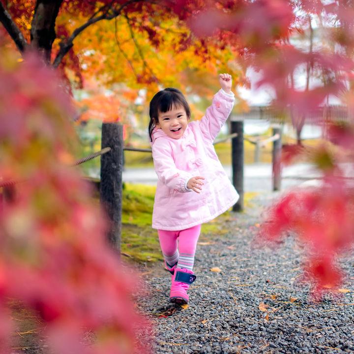 子どもと秋ならではのアウトドアを楽しもう。場所別の楽しみ方など