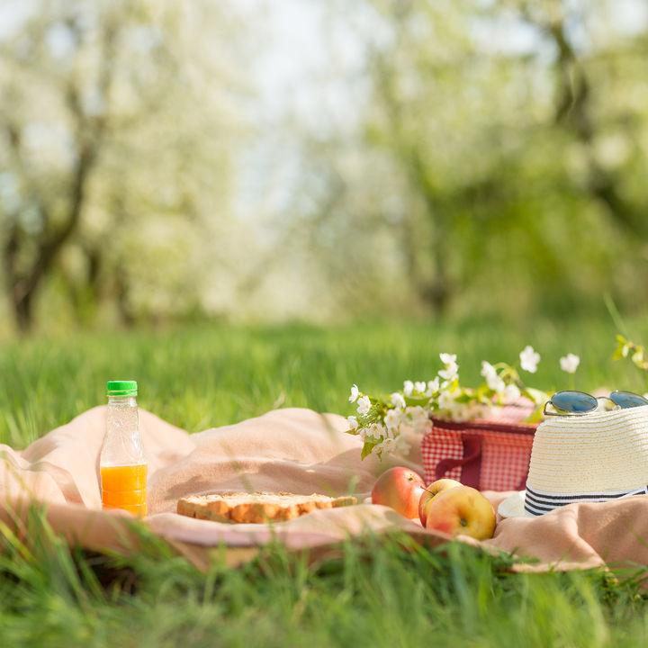 ピクニックの飲み物の選び方。ママたちが用意したおしゃれな飲み物