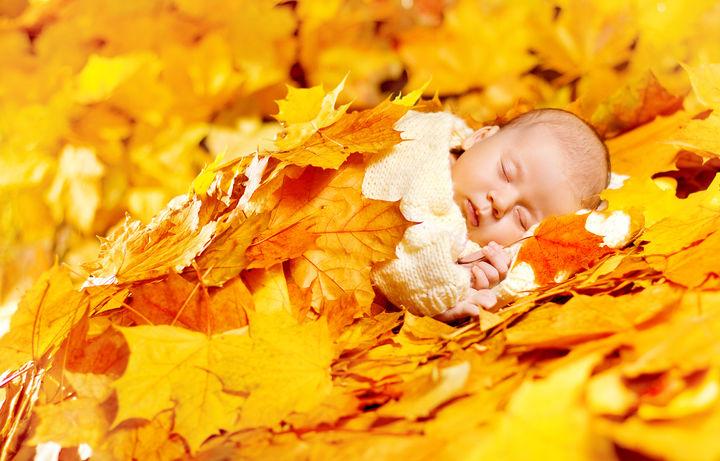 落ち葉と赤ちゃん
