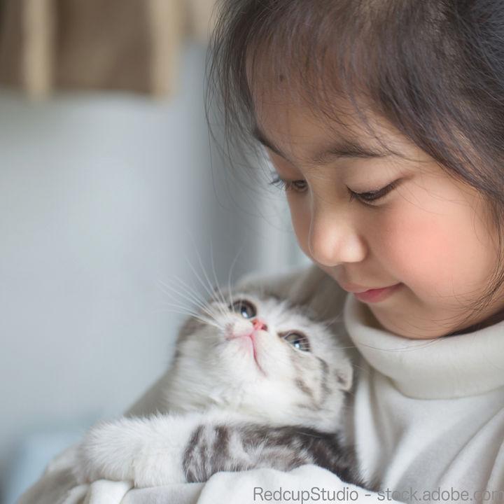 子どものいる家庭でペットを飼うのは何歳から?飼うときに気をつけたいこと