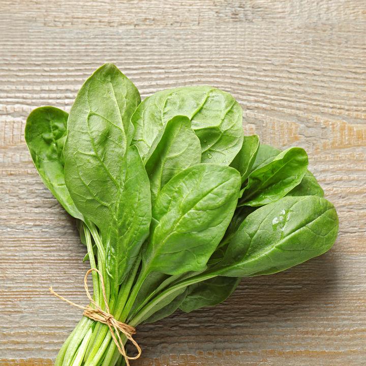 離乳食ごっくん期のほうれん草レシピ。野菜もしっかり取り入れよう